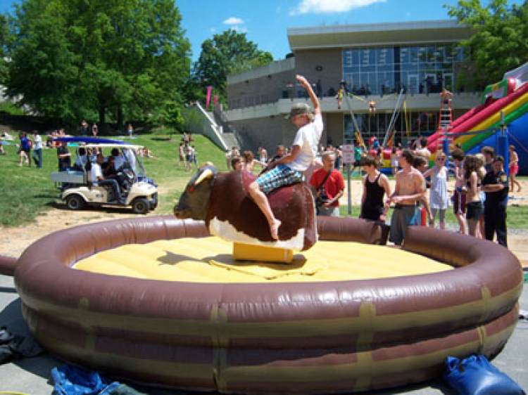 Mechanical Bull #1